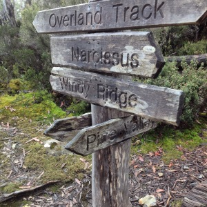 Overland Track signpost March 2015